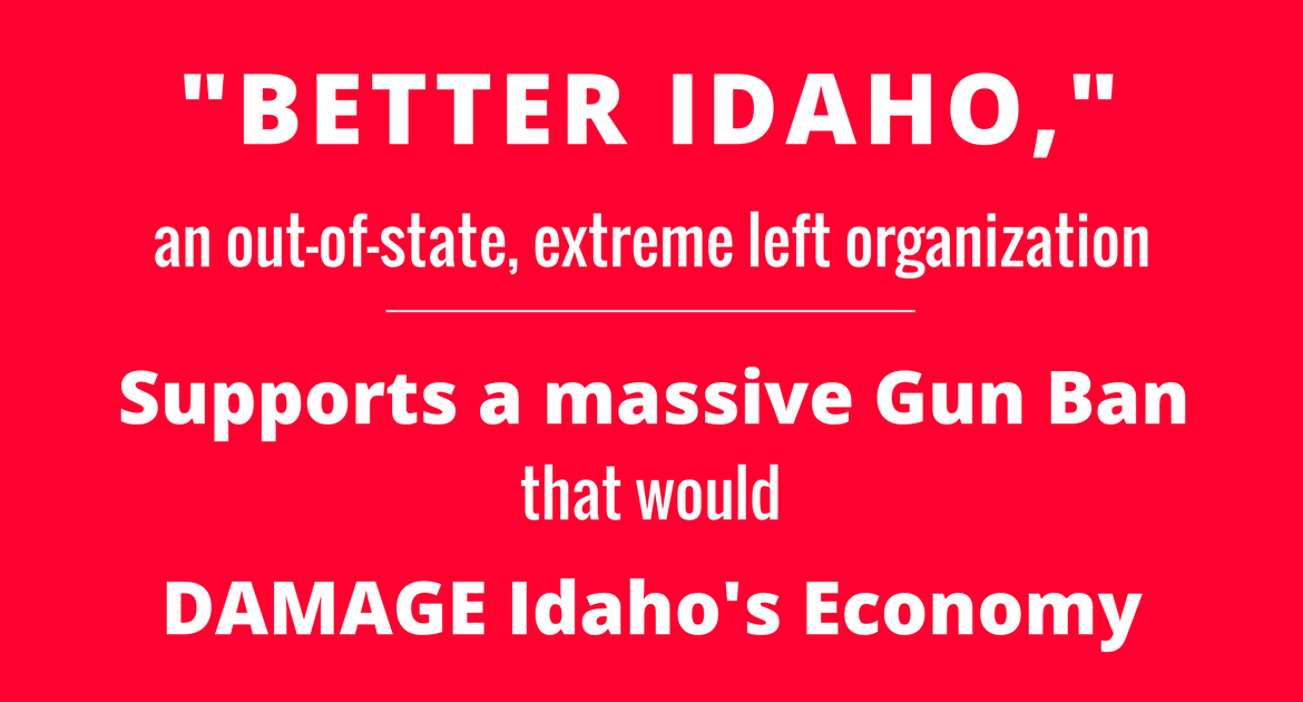 What a gun ban could mean to Idaho's people & economy