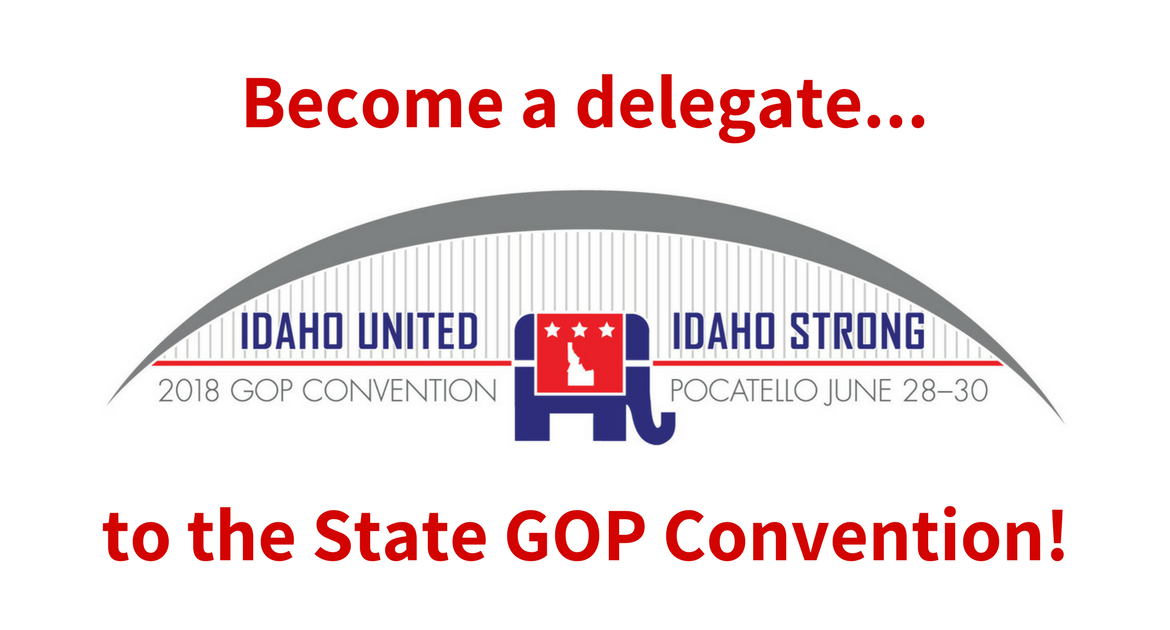 Want to take part in our state convention? Be a delegate!